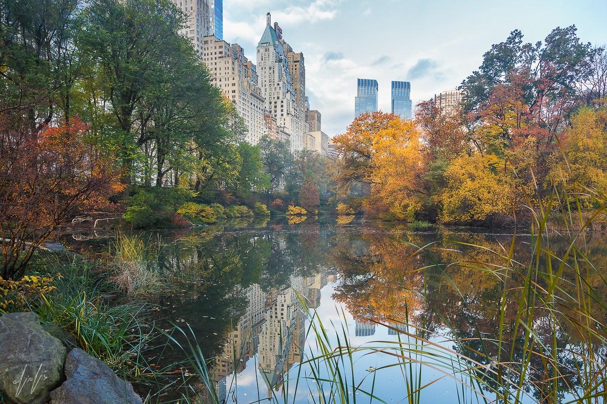 Morning at Central Park - Manhattan