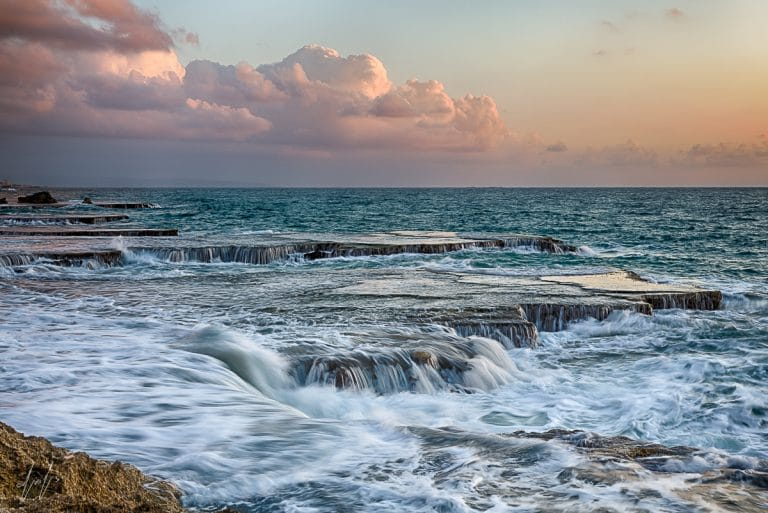 PRIMAL SEA