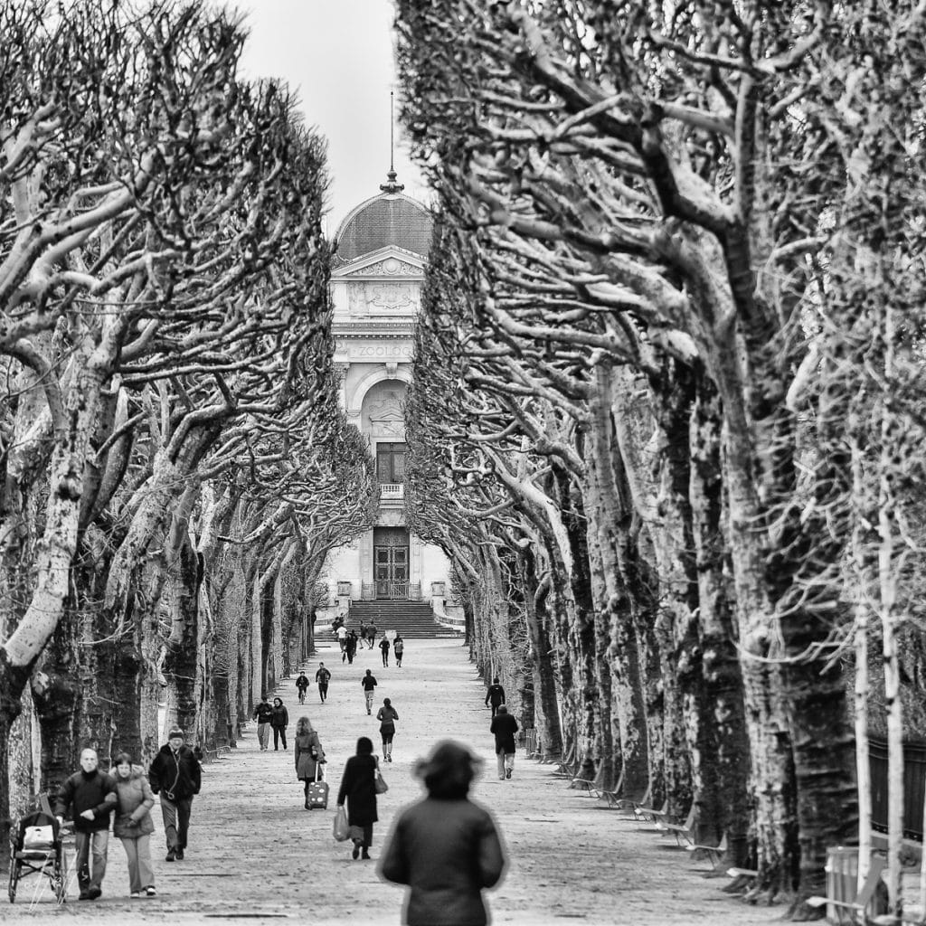 Paris - magical moment frozen in time